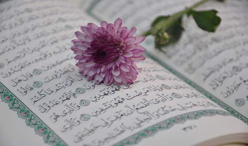 مفهوم الصدقة في القرآن الكريم