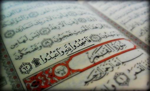 الإنسان في القرآن