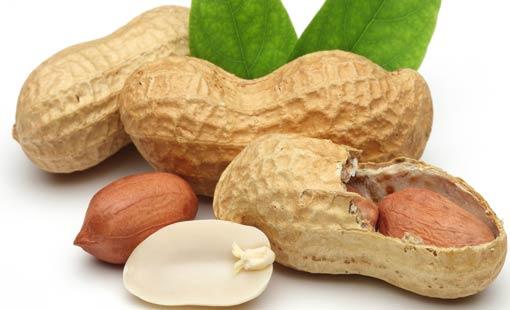 الفوائد الغذائية المذهلة للفول السوداني