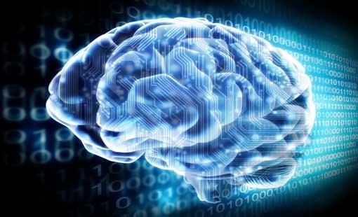 التطور العقلي المعرفي