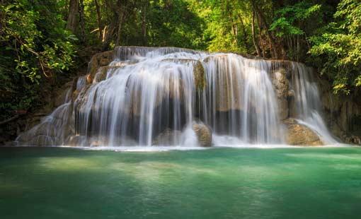 خلق الحياة من الماء