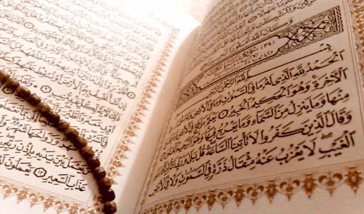عناصر المجتمع في القرآن الكريم/ ج (5)