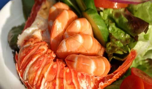 هل من فوائد صحية حقيقية للنباتات البحرية؟