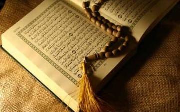 القرآن وقانون التنازع في البقاء