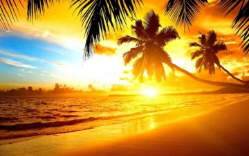 ما تجهله عن فيتامين الشمس؟
