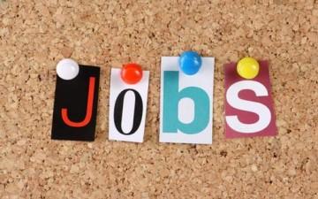دوامة الوظائف والإختيار الأمثل