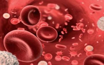 فقر الدم.. أسباب وعلاج