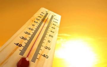 اختبر معلوماتك عن ضربة الشمس