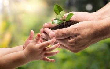 أطفالنا واضطراب نقص الطبيعة