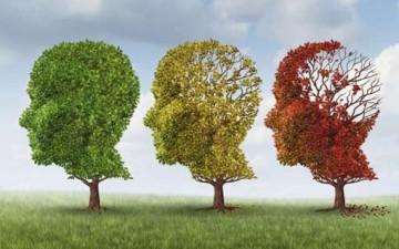 ماذا نعرف عن مرض الـ «زهایمر»