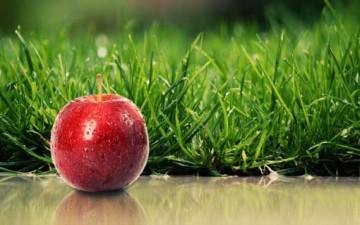 أسباب لتأكل التفاح يومياً