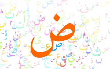 دور اللغة العربية في ترسيخ الهويات الوطنية