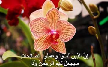 مبادئ الصحة النفسية في القرآن الكريم