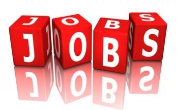 الأهداف الستة للعام الأول من التوظف