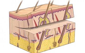 علاقة الأمراض الجلدية بالصحة النفسية