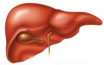 مخاطر أمراض الكبد الشائعة