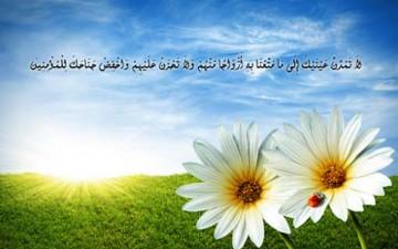 التواضع في القرآن الكريم