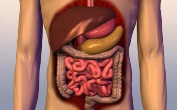 أخطاء تُدمر جهازك الهضمي