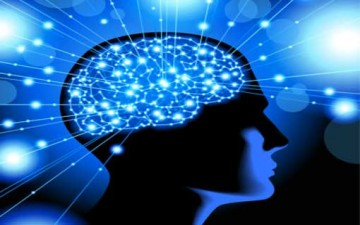 الإدراك والواقع وعقل الإنسان