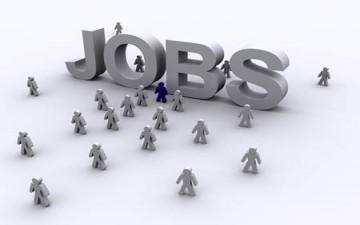 املأ وقتك في وظيفة البحث عن وظيفة