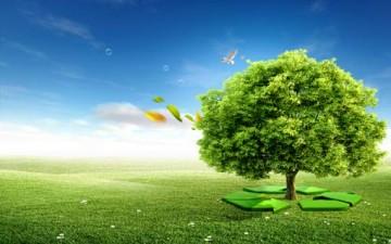 أفكار صغيرة لحياة خضراء.. قراءة في كتاب