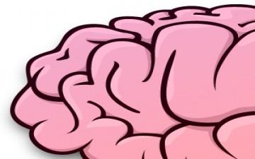 أغذية صديقة للمخ