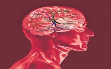 فيتامينات للعقل