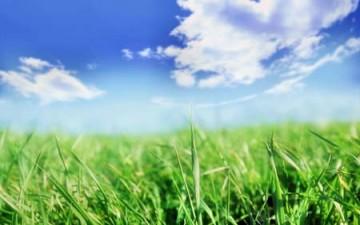 أرضي الخضراء
