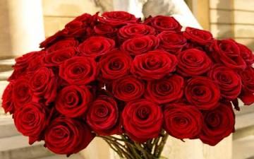 باقة الورد