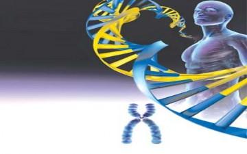 الجينوم البشري الشخصي.. يدشن عهدا جديدا