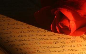لوحات فنية في القرآن الكريم