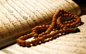 نماذج قرآنية للتربية