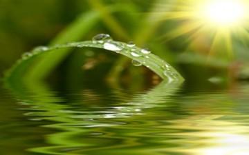 الفطرة الإنسانية والبيئة