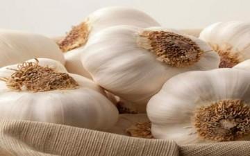 أهمية الفجل والثوم فى علاج الأمراض