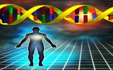 عامل الوراثة وثقافة المجتمع